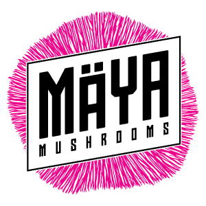 Maya Mushrooms